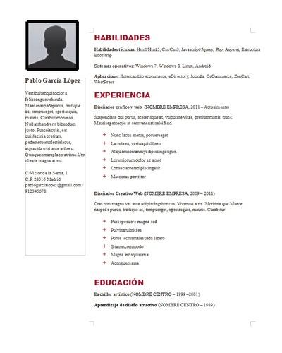 Plantilla curriculum vitae 8